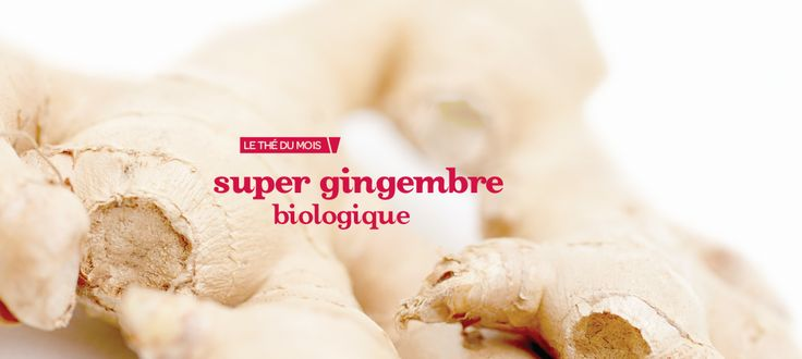 Super gingembre biologique by DavidsTea