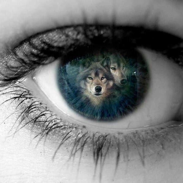 And he looked into her eyes, and saw two wolves, one of ferocity and protectiveness, the other of loving and kindness. He knew she was special.