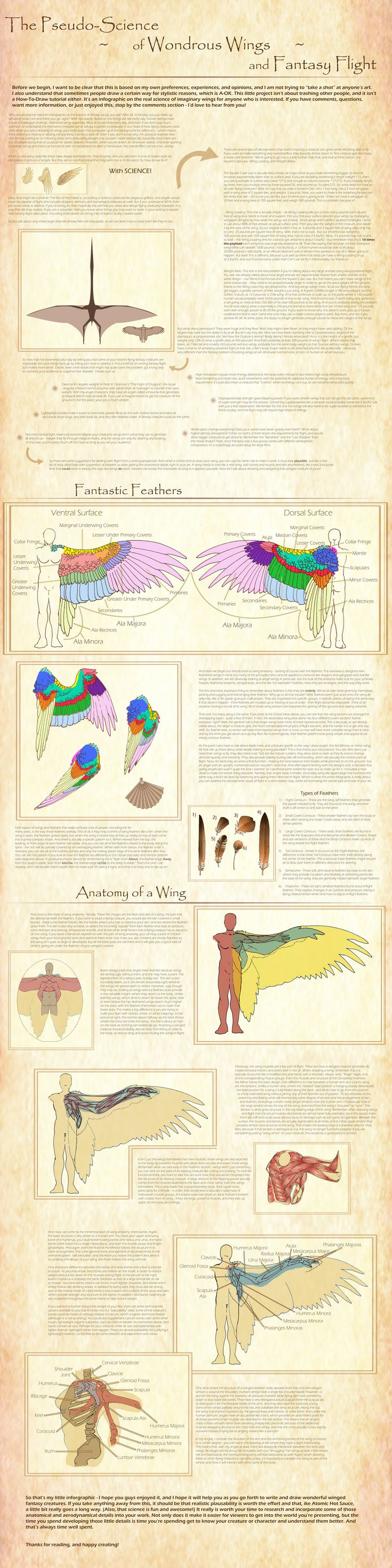 A Guide to Fantasy Fliers and Feathered Wings by BlueNephelim