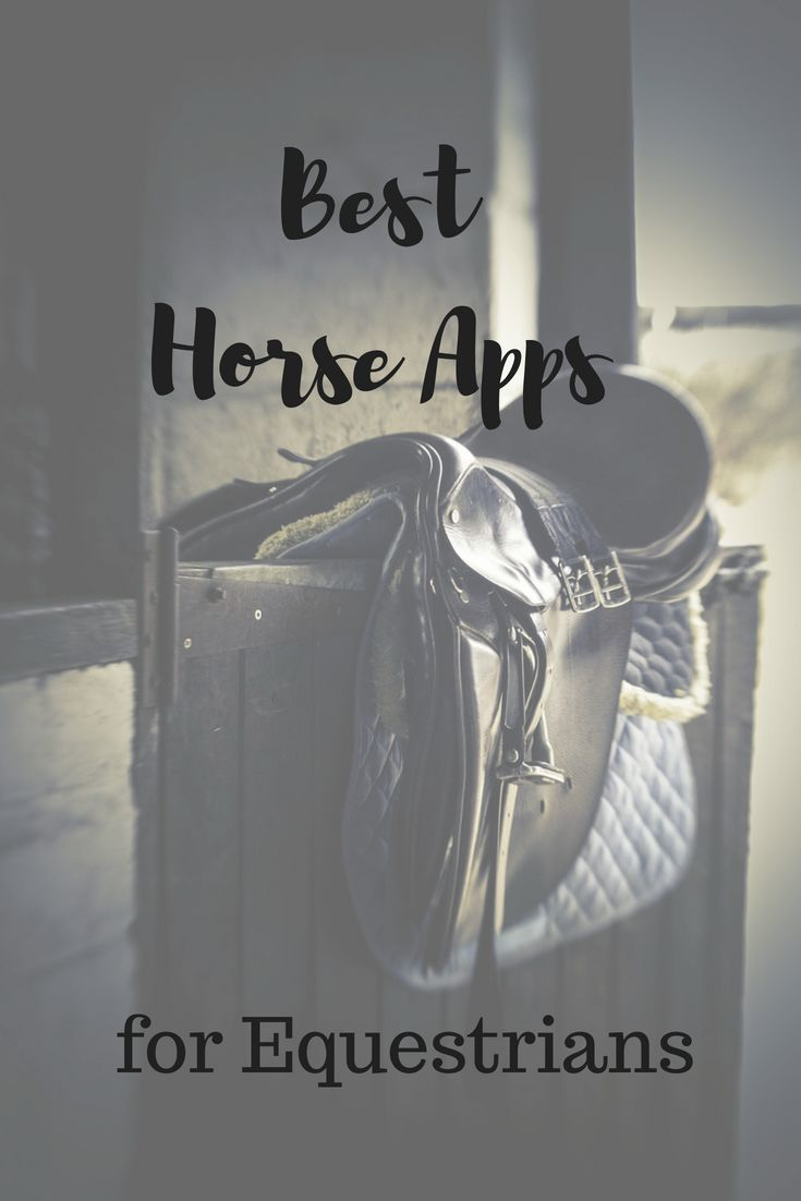 fun horse apps