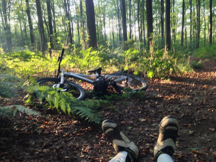 Have a rest mtb after work sunset in the woods