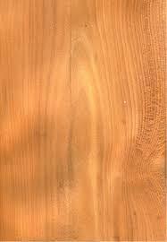 El tejo es una madera blanda, de grano recto y denso, cuyo duramen es de color rojo anaranjado y la albura de un color claro que lo diferencia de forma nítida del duramen. Es una madera muy utilizada en la decoración, por el juego de sus distintos colores y por la forma de sus anillos de crecimiento, pero es difícil de trabajar. Hoy en día su uso es prácticamente inexistente. Durante muchos años se le atribuyeron poderes mágicos y se usaron en puertas y arcos para proteger del mal de ojos.