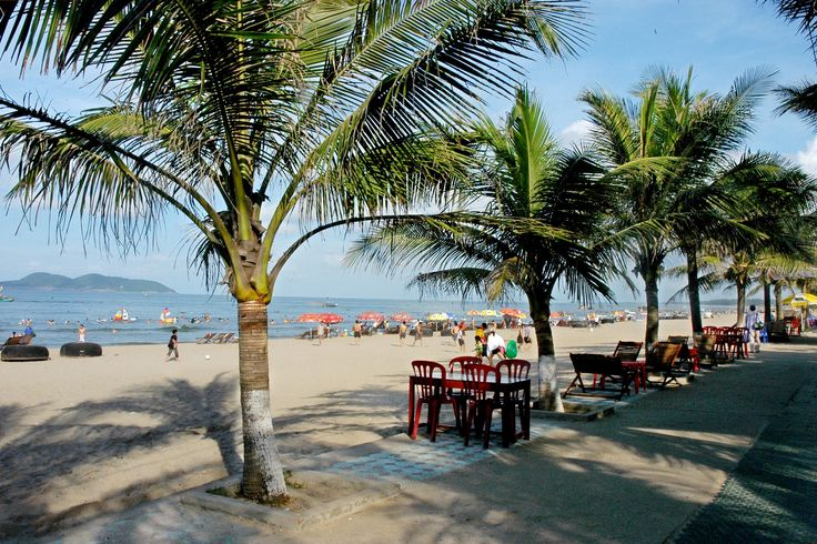 Explore charming Cua Lo beach in Nghe An -  Cua Lo beach is one of the most popular destinations for tourists in Nghe An, particularly in summer. It's famous for white sandy beaches and clear blue water, which is surrounded by a stunning pine forest and green coconut lines.  #BeachesInVietnam, #ThingsToSeeInNghean, #VietnamBeach -  #Destination, #DestinationintheCentral, #NgheAn