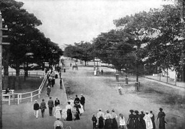 Manly Corso in the Northern Beaches region of Sydney in 1878.