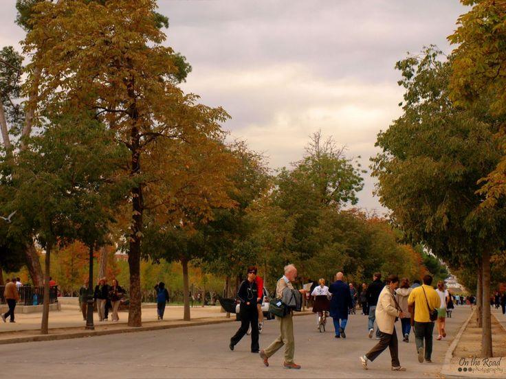 Perfect walk in the park in a perfect autumn day – Parque del Retiro, Madrid.