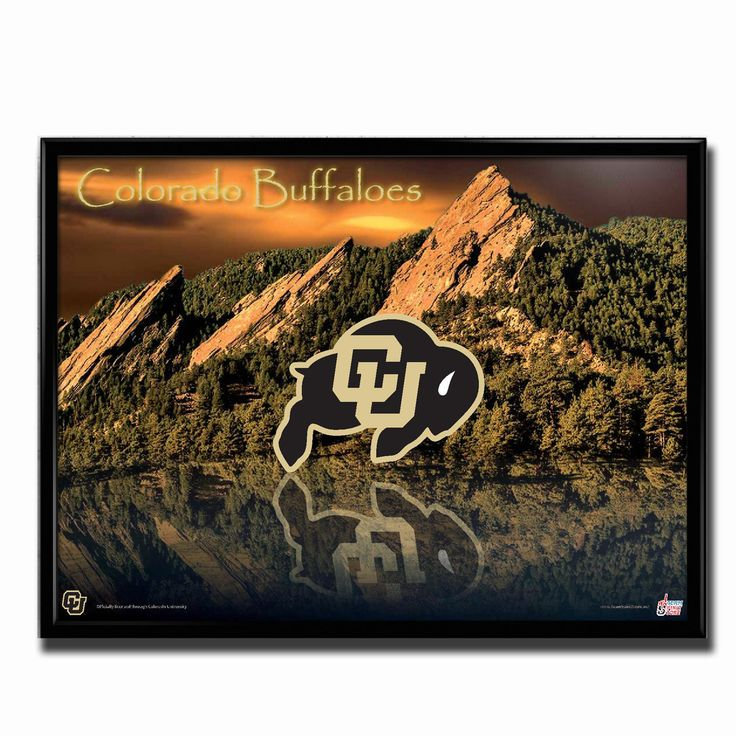 35 Best Images About Colorado Buffaloes Football Fans On