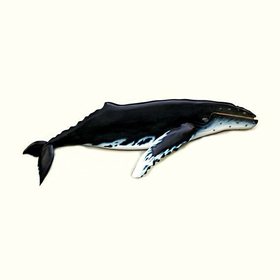 Humpback Whale art sculpture 36in. Whale art beach by WOODNARTS