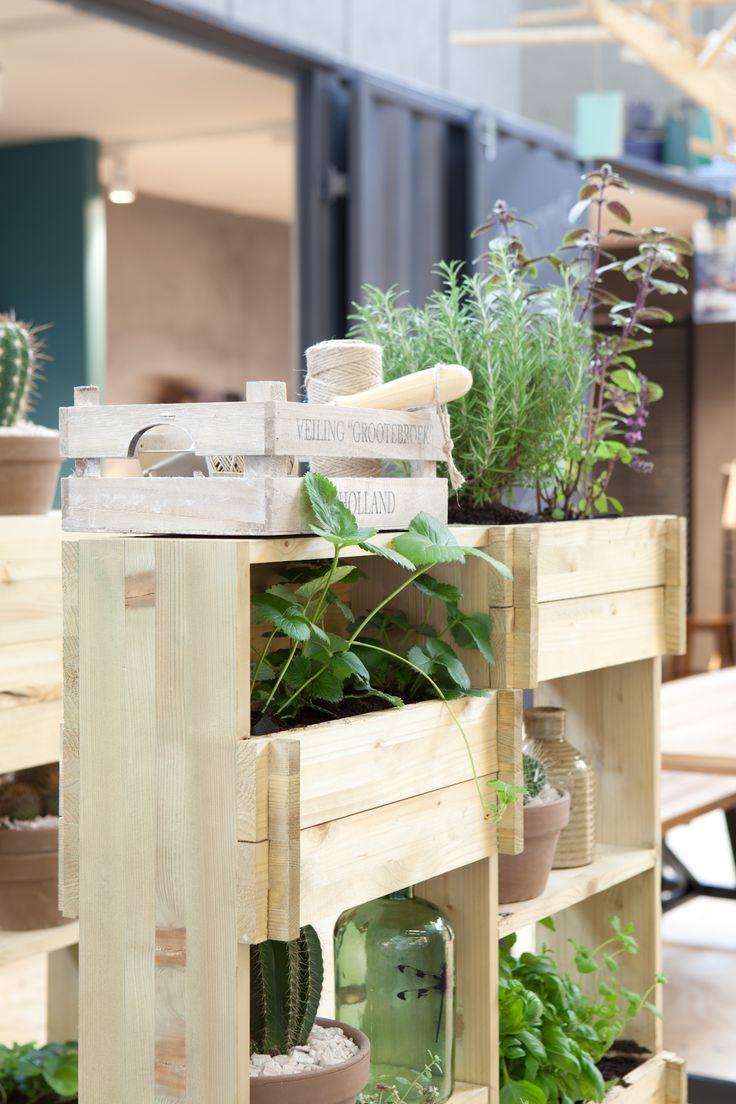 KARWEI | Met een kast in de kamer kun je ook plantjes, cactussen of kruiden verbouwen. #woonbeurs #karwei #inspiratie