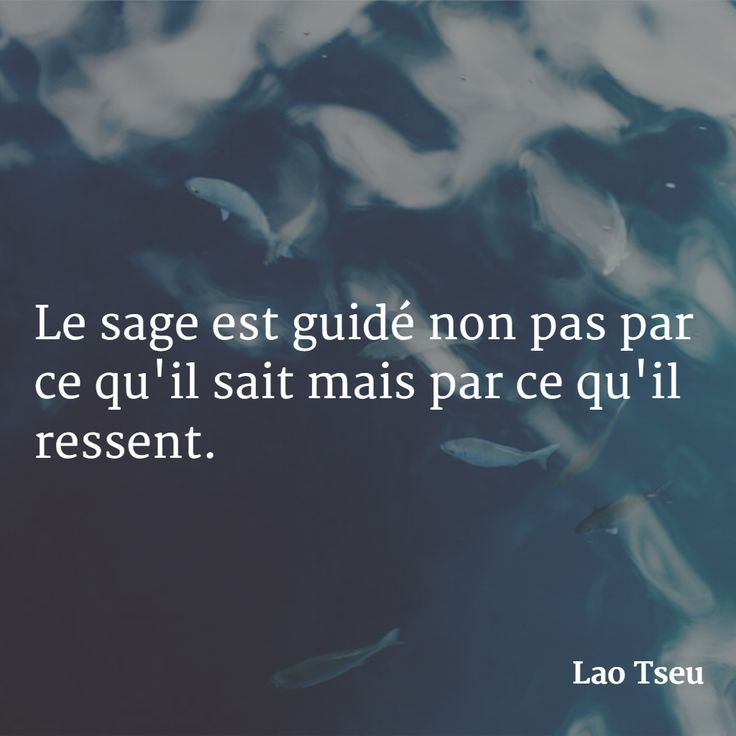 """""""Le sage est guidé non pas par ce qu'il sait mais par ce qu'il ressent."""" (Lao Tseu) #citation #philosophie"""