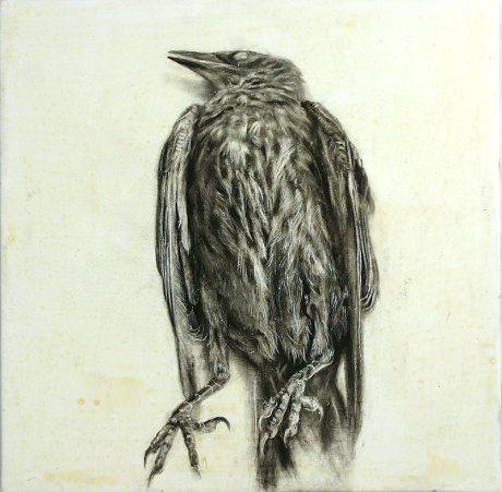 Black Bird - Celebration - drawing - Ingrid Blixt