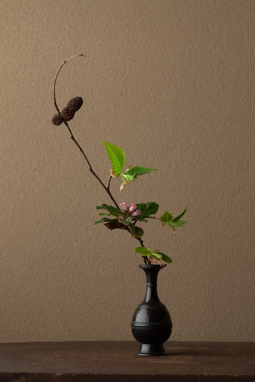 Ikebana by Toshiro Kawase: