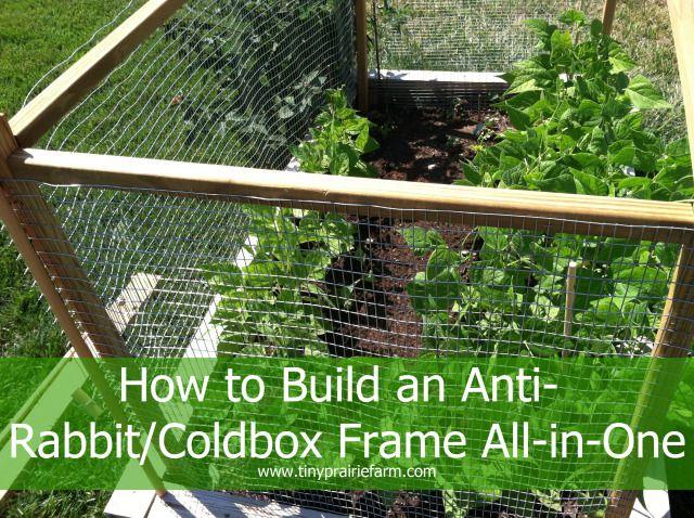 31 best Rabbit Proofing the Garden images on Pinterest Rabbit