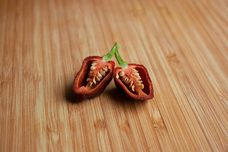 https://flic.kr/p/YMYfhm | Apocalypse Scorpion Pepper | This is the brown variant of the Apocalypse Scorpion Chili Pepper. It is thus named Chocolate. It is of the Capsicum Chinense species and is very hot.  You are allowed to use for your projects; attribution goes to the Chili Life (www.thechili.life).