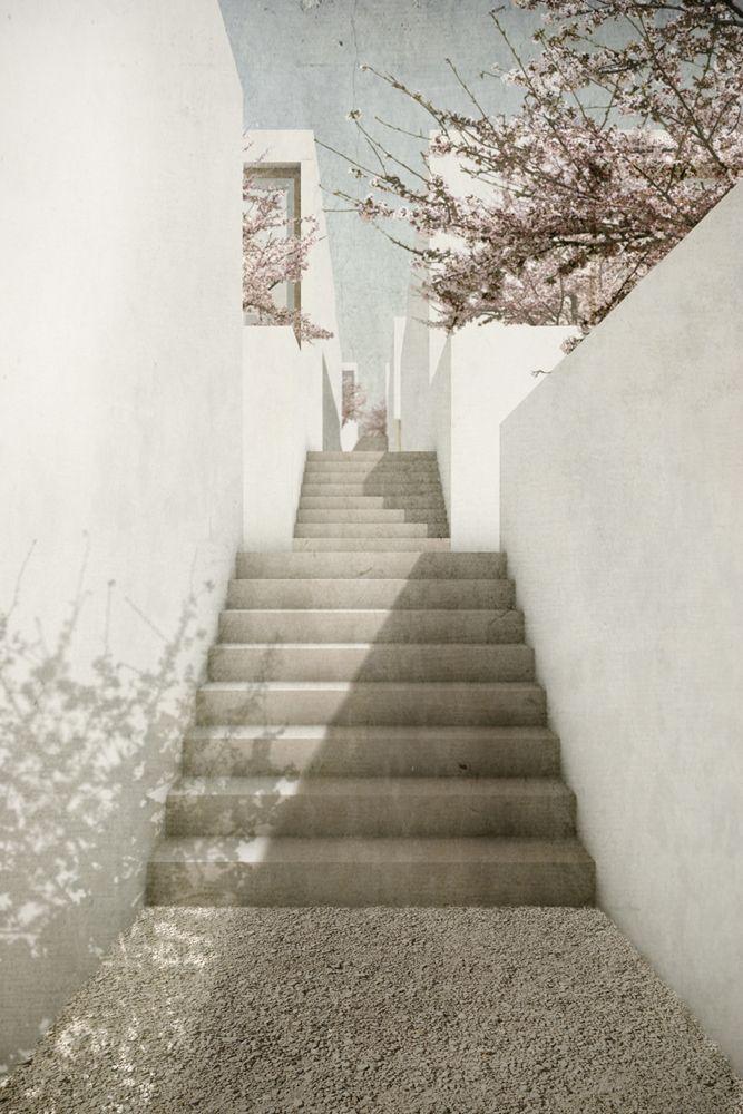 Nach Hause Kommen / Studio BANG