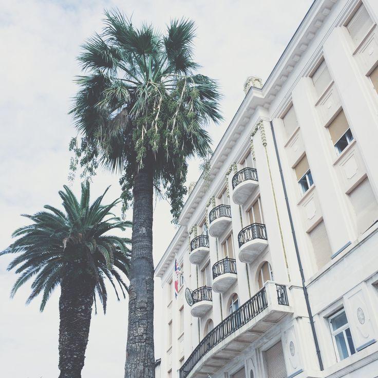 endless palms - croatia.