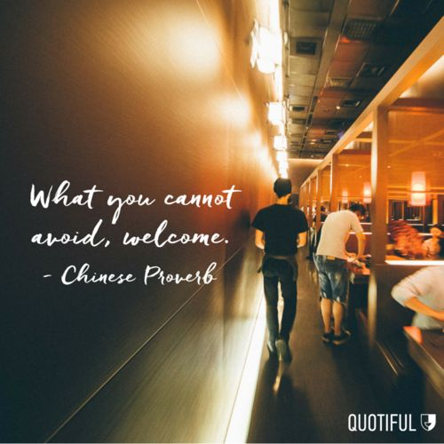 """""""What you cannot avoid, welcome."""" - Chinese Proverb"""
