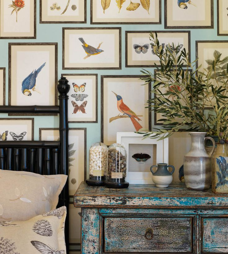 Tropical Interior Trend | Picture Gallery Wallpaper by Sanderson | Jane Clayton