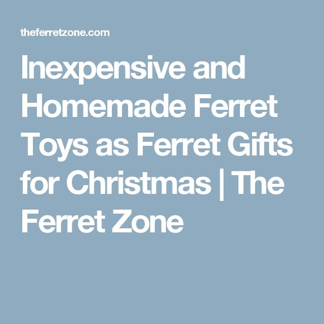 Inexpensive and Homemade Ferret Toys as Ferret Gifts for Christmas | The Ferret Zone