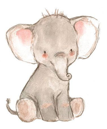 Another great find on #zulily! Little Pachyderm Print #zulilyfinds