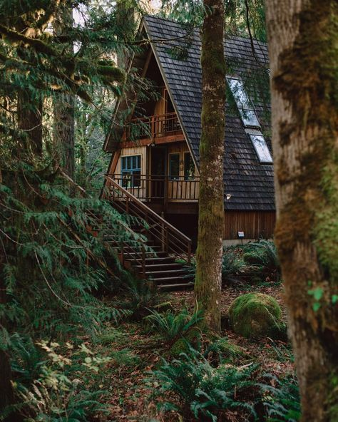 a-frame cabin in the woods                                                                                                                                                      More