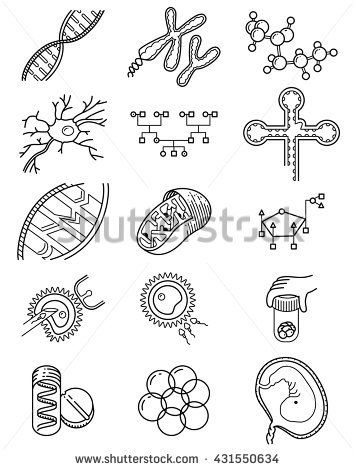 Vector simplicity science icons set with genetic and microbiological objects. Medical collection with DNA and RNA molecule, neuron and embryo cells, in vitro fertilization process, Genetic Engineering