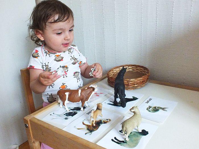 Potrivire obiecte cu imagini - Clipe Frumoase cu Ema