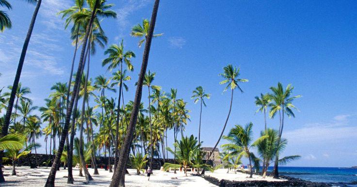 O que vestir em um Luau?. Tradicionalmente, um luau é uma festa havaiana com dançarinas de hula e muita música. Atualmente, qualquer um que visitar as ilhas havaianas pode entrar em luaus comerciais. Se você for um dos muitos turistas que nunca participaram desse tipo de festa, poderá estar se perguntando como se vestir para a ocasião. Seguindo o espírito relaxado do ...