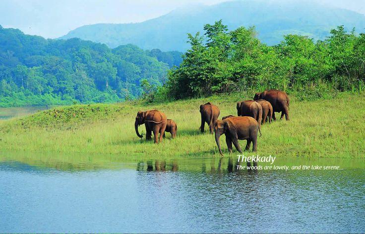 #Thekkady - #Periyar #wildlife sanctuary