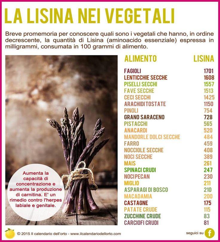 La Lisina nei vegetali