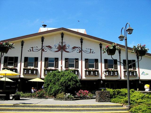 Snoopy Cafe Santa Rosa Ca