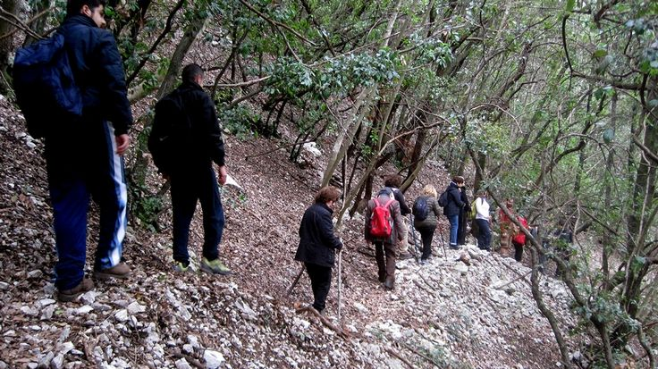 Under the beautiful #holmoak woods in Roccantica