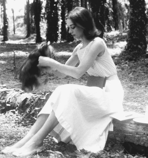 Audrey Hepburn lovingly picking up her little dog Famous. She was in Congo, Africa to shoot her 1959 film The Nun's Story.