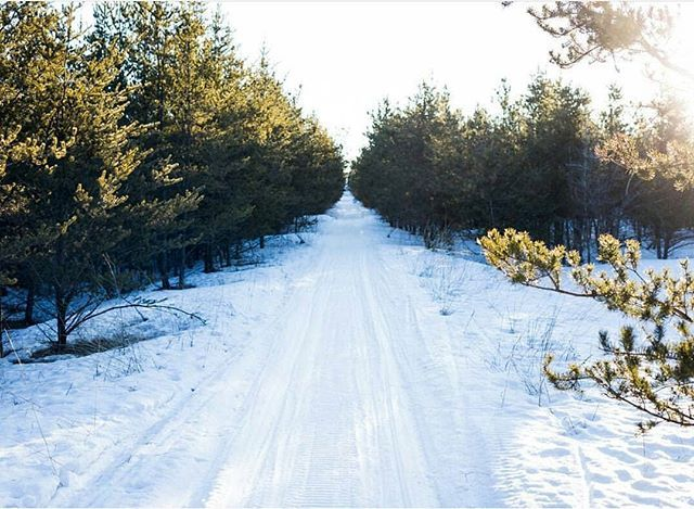 Taken in Piney, Manitoba, Photo by @sm.goethals - #Trails & backroads in #Manitoba are wonderful for #Hiking & snowmobiling. #EasternMb