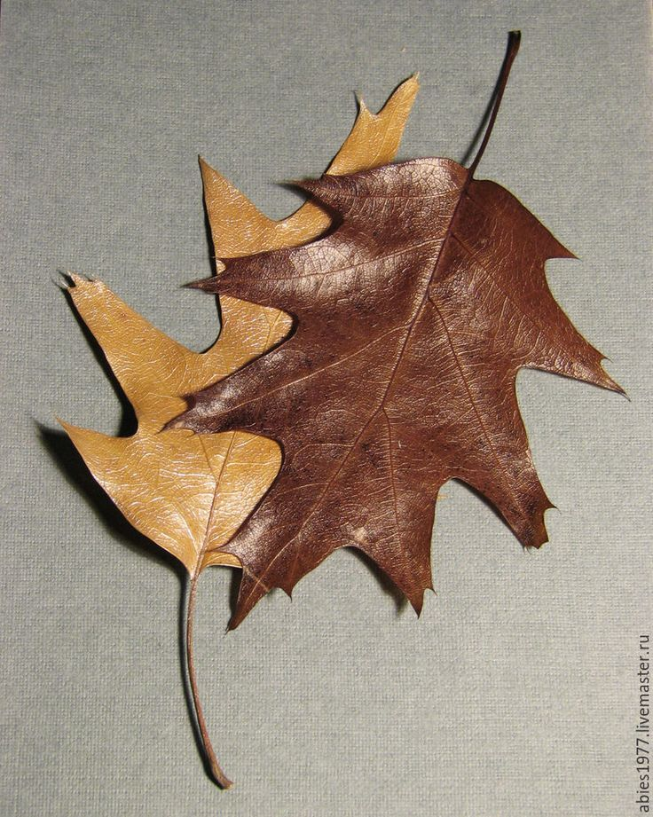 439Картина из листьев своими руками мастер класс