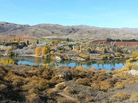 A beautiful autumn day in Bannockburn.  This picture was taken by one of our Visitor Centre consultants in Cromwell.  If you want to know more about Bannockburn please contact http://www.centralotagonz.com/central-otago-new-zealand/i-sites_idl=10005_idt=305_id=1671_.html