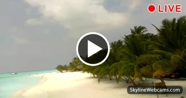 View over the beach of Meeru Island in the #Maldives.