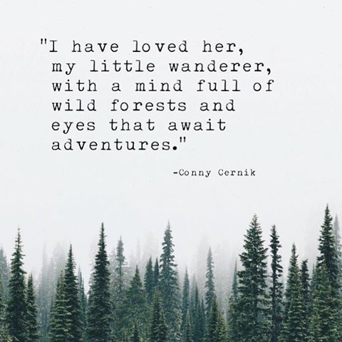 #connycernik #quotes #quote #quoteoftheday #tumblrquotes #poetry #ink #inked #wild #adventure #wanderer #travel #wanderlust #lifeofadventure #she #lovequotes #different #writingcommunity #forest #places