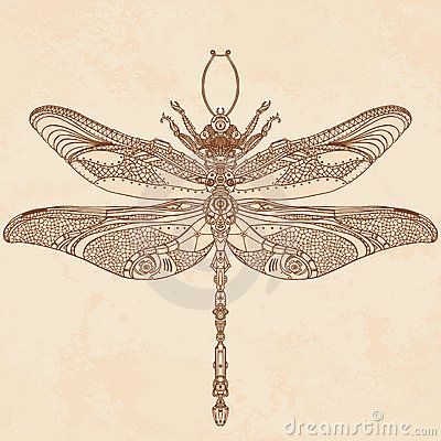 Google Image Result for http://www.dreamstime.com/steampunk-dragonfly-thumb23254106.jpg