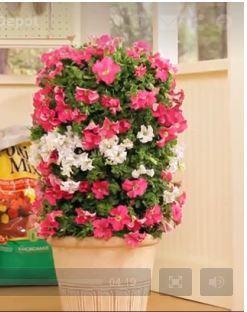 Best Hd Garden Club Images On Pinterest Garden Club Home