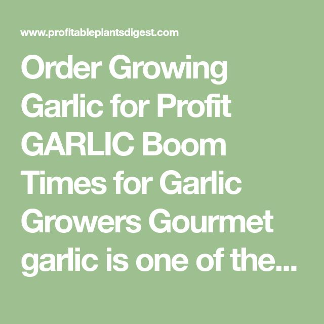 Order Growing Garlic For Profit Boom Times Growers Gourmet Is One Of The Easiest And Most Profitable Cash Crops F