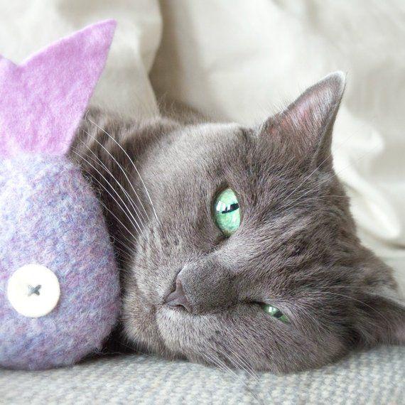 Catnip Toy Cat Toy Catnip Fish Lilac Tropical Fish Organic Catnip Felt Cat Toy Purple Cat Toy Toys For Cats Catnip Toys Cat Toys Felt Cat
