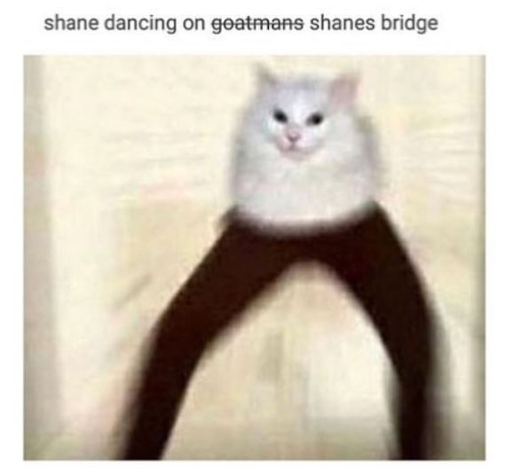 Shane Madej Buzzfeed Unsolved Funny Pictures Tumblr Tumblr Funny Funny Pictures
