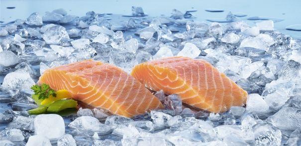 Fisk og skaldyr | Semper Børnemad & Babymad