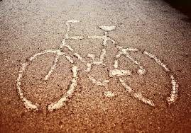 També tenim servei de bicicletes i mentres pedaleges gaudeixes de la natura en estat pur