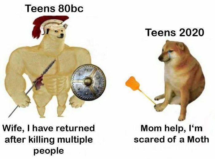 Then Now Dog Meme Funny Motivation Pinterest Memes Fun Quotes Funny