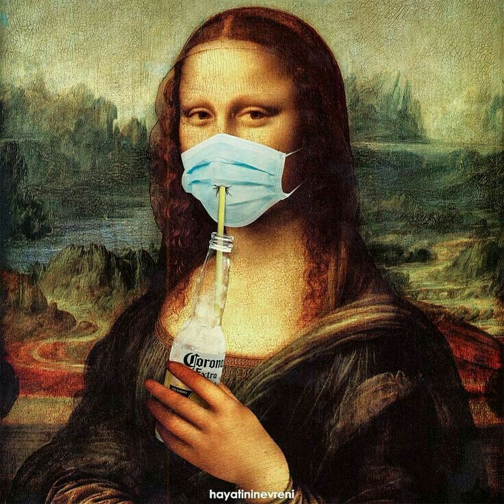 Pin by Martine B on (mona lisa funny ) | Funny art, Art parody, Mona lisa