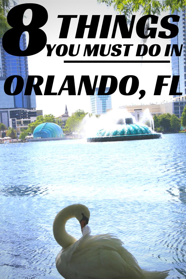 Going on vacation to orlando florida here are 8 must do things in the city beautiful from night life to tailgating and even the best place to