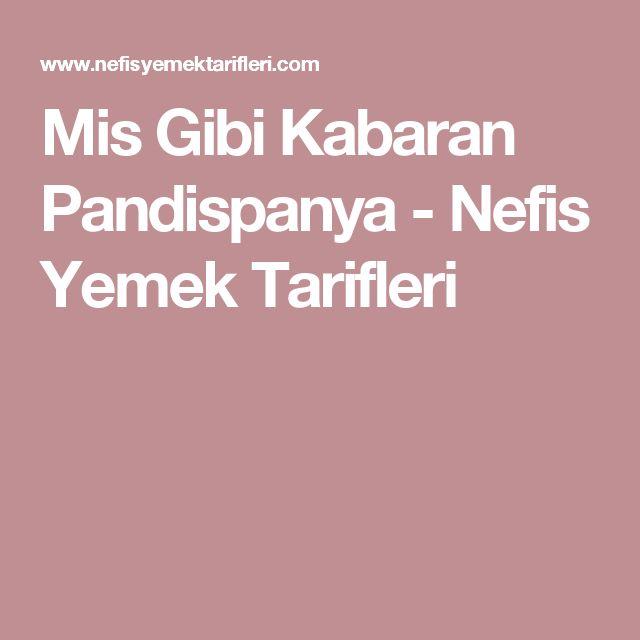 Mis Gibi Kabaran Pandispanya - Nefis Yemek Tarifleri