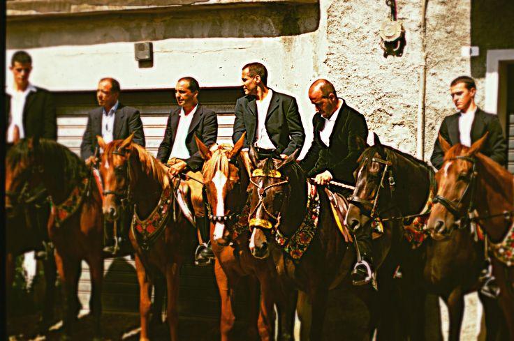 Visto è considerato che quando la cacciagione era abbondante e 'protetta' in Sardegna, da Milis partivano battute di caccia al daino e al cinghiale nei monti del Lussurgese. Milis, Bonarcado, Cuglieri, Santu Lussurgiu e Seneghe ed altri paesi limitrofi furono un'attrazione per i continentali e la curatoria di Milis divenne per secoli una celebre stazione ferroviaria di cavalli, non molto distante dalla Tanca Regia di Paulilatino...