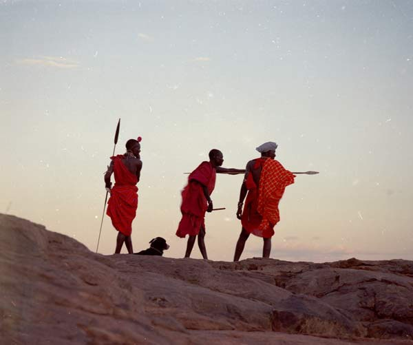Our guides will help you discover Africa.